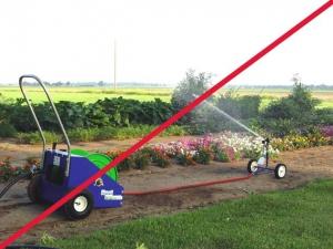 rg-20-in-garden_2_line